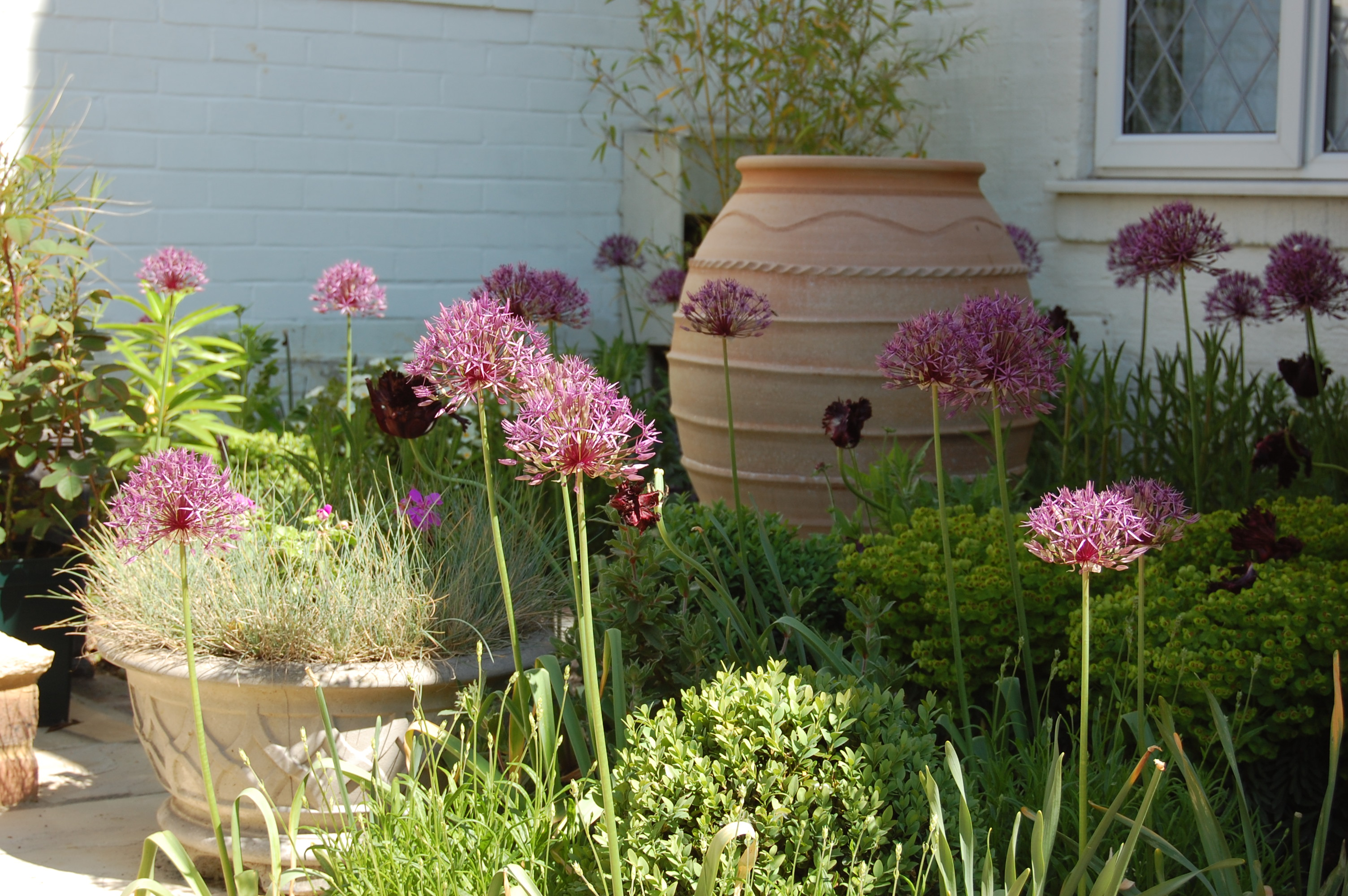 Picture showing a garden design by Ben MacDonald