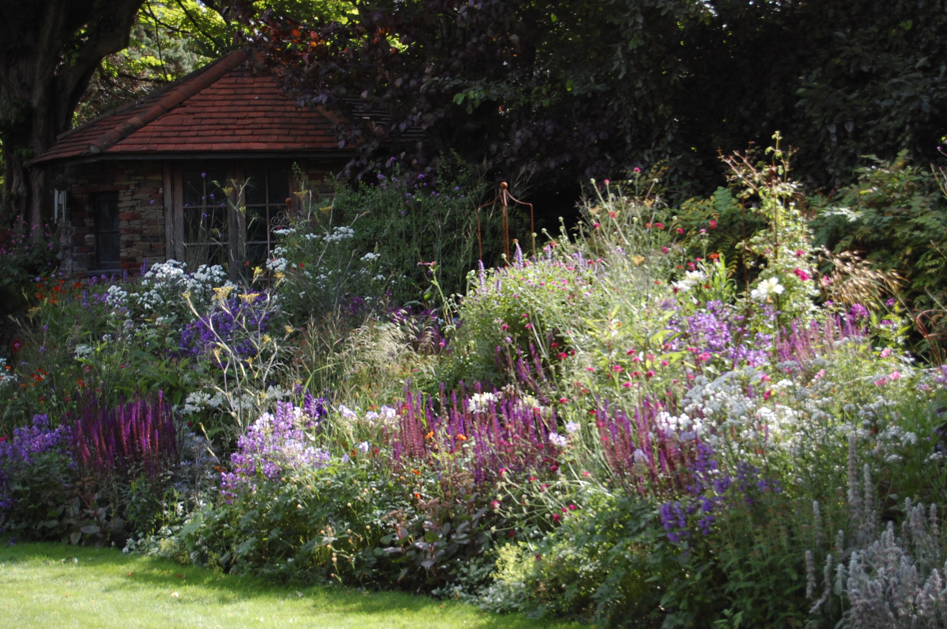 Projects herbaceous border hove east sussex for Garden design east sussex